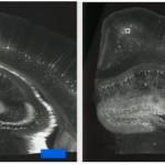 無需諾貝爾獎高貴儀器 普通顯微鏡也可看到奈米級物質