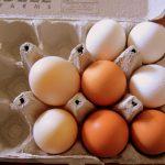 在美國,一個蛋比雞貴的時代來臨!