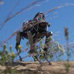 美國海軍陸戰隊測試最新機器狗 Spot  未來將以工作犬身分上戰場