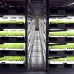 農業技術轉移!日本將於 2017 年蓋出第一間完全機械化的農場