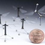 美國科學家打造微型光達裝置,讓機器蜜蜂「看得見」