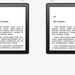 the-digital-reader.com