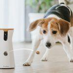 可以丟零食的 Furbo 狗狗攝影機,安撫狗寶貝獨自在家的焦慮感
