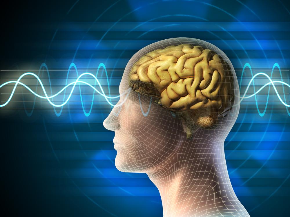 英國新研究表明,人腦可以預測未來影像