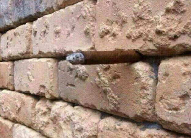 再度把網友搞瘋的視覺圖:這面磚牆裡藏了一個東西,你看出來了嗎? - 華安 - ceo.lin的博客