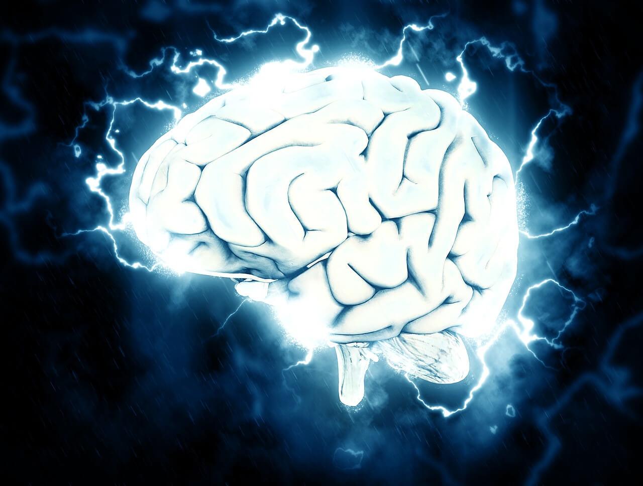 馬斯克預言現雛形,科學家首證實大腦植入物可提升記憶力