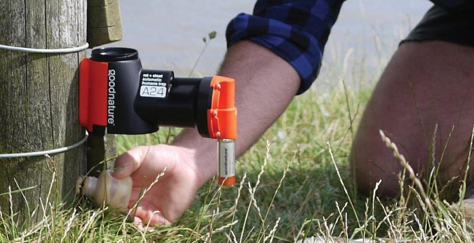 紐西蘭的革命性超級滅鼠器,無毒又環保