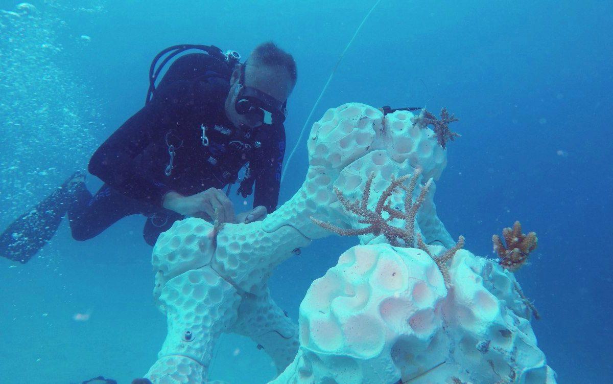 3D 列印人工珊瑚礁,可助恢復海洋生態