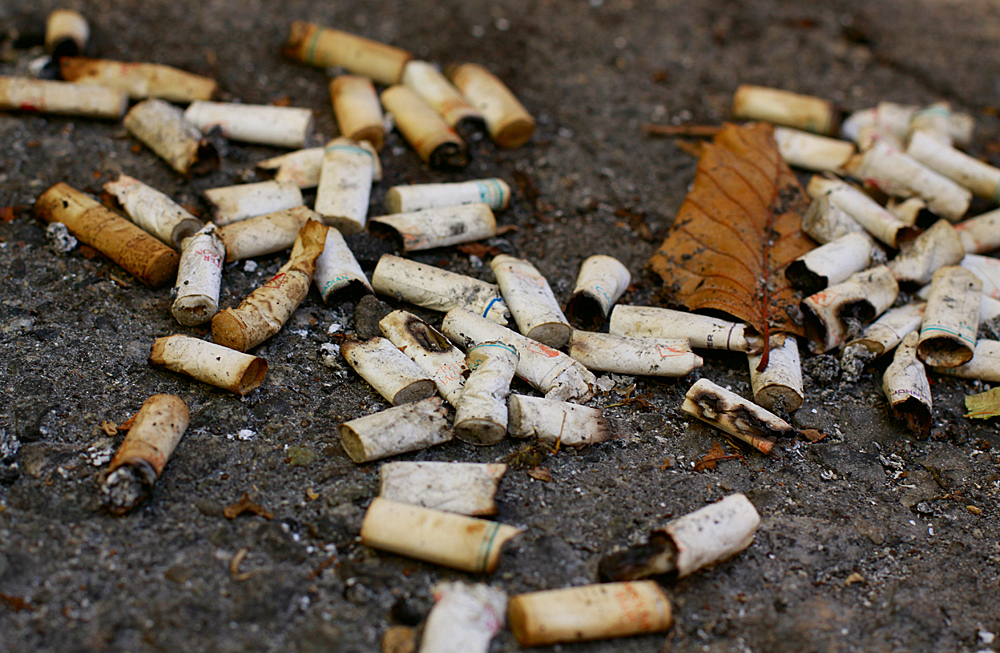 比吸管還可怕,海洋塑膠最大污染源是菸嘴