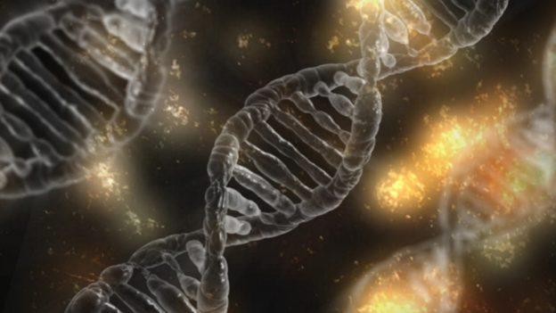 研究:低社經地位不只會影響健康,還會在基因留下痕跡
