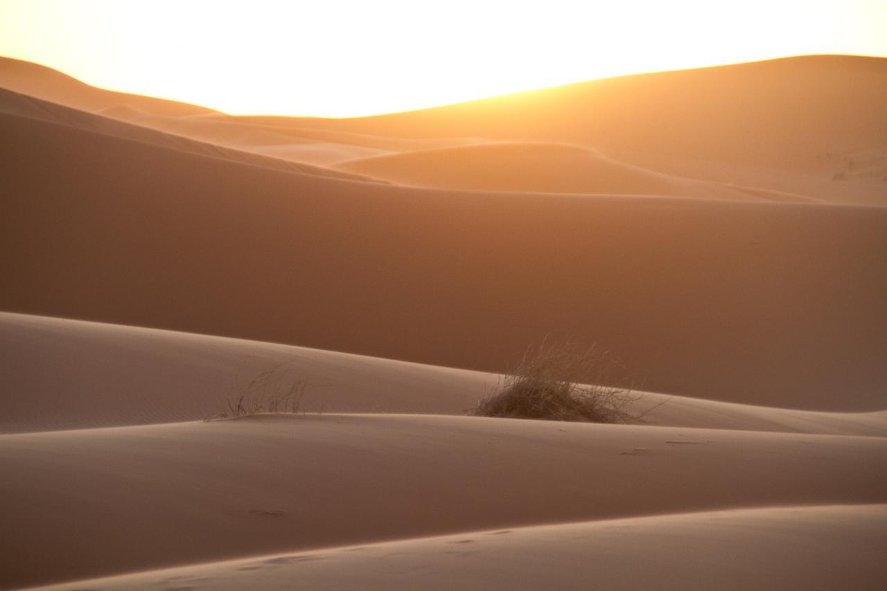 沙漠太陽能有望輸電歐洲?能源選擇跟當地政府支持為重點