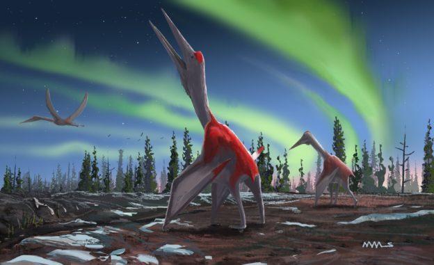 30 多年前出土化石,科學家證實為新品種翼龍