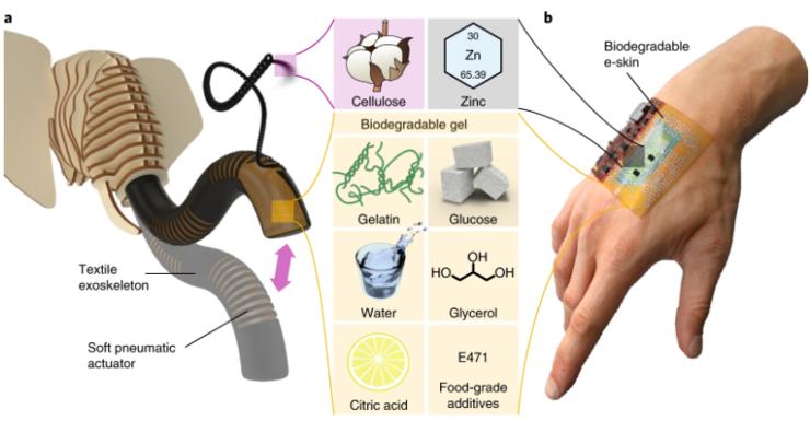 食用級材料製作、可完全分解的機器人能吃嗎?